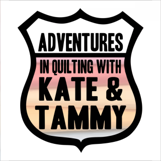 Adventures in quilting 032718