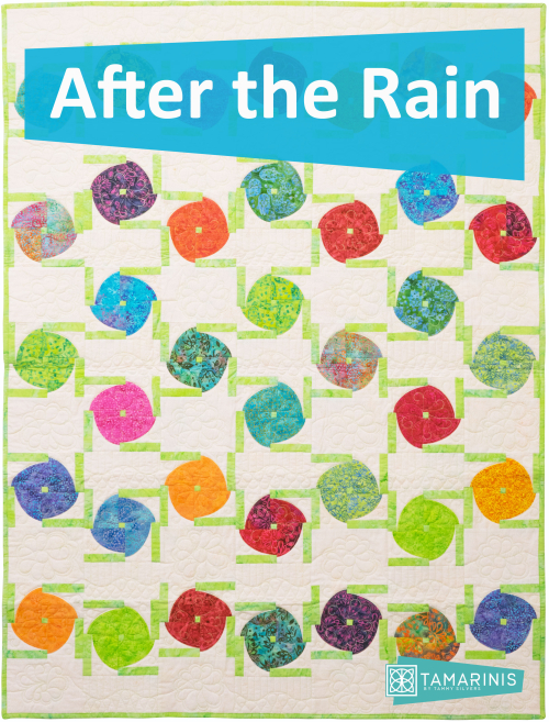 Kismet Blog Hop featured by top US quilting blog and shop, Tamarinis: image of After the Rain Blog Pic 2